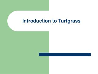 Introduction to Turfgrass