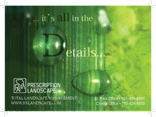 it s all in the Details