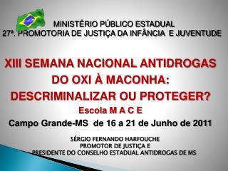 MINIST RIO P BLICO ESTADUAL 27 . PROMOTORIA DE JUSTI A DA INF NCIA  E JUVENTUDE