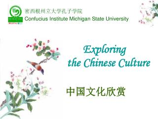 Exploring  the Chinese Culture