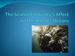 The Seafood Industry s Affect on the World s Oceans