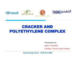 CRACKER AND POLYETHYLENE COMPLEX