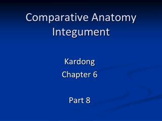 Comparative Anatomy Integument