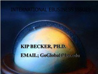 INTERNATIONAL EBUSINESS ISSUES
