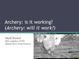 Archery: is it working