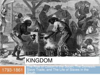 Life in the Cotton Kingdom