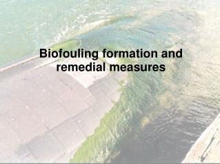Biofouling formation and remedial measures