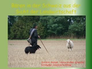 B ren in der Schweiz aus der Sicht der Landwirtschaft