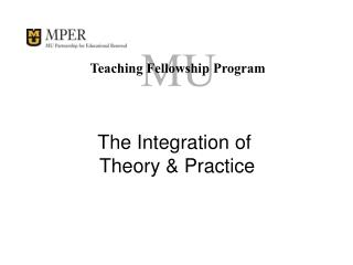 Teaching Fellowship Program