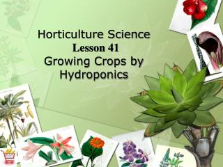 Horticulture Science  Lesson 41 Growing Crops by Hydroponics