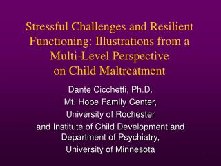 Stressful Challenges and Resilient Functioning: Illustrations from a  Multi-Level Perspective  on Child Maltreatment