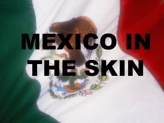 MEXICO IN THE SKIN