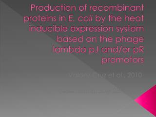 Production of recombinant proteins in E. coli by the heat inducible expression system based on the phage lambda pJ and
