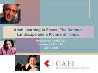 Adult Learning in Focus: The National Landscape and a Picture of Illinois