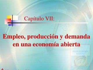Cap tulo VII: