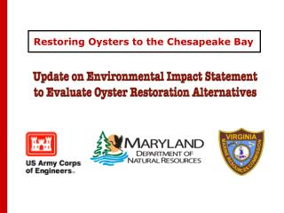 Restoring Oysters to the Chesapeake Bay