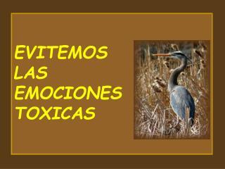 EVITEMOS  LAS EMOCIONES  TOXICAS                                                                           P. Ignacio La