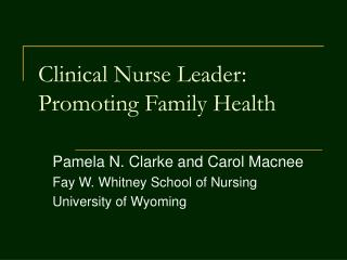 Clinical Nurse Leader: Promoting Family Health
