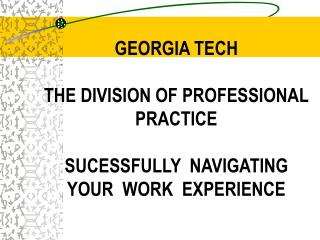 GEORGIA TECH  THE DIVISION OF PROFESSIONAL PRACTICE  SUCESSFULLY  NAVIGATING  YOUR  WORK  EXPERIENCE