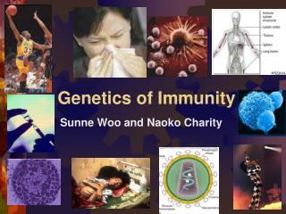 Genetics of Immunity