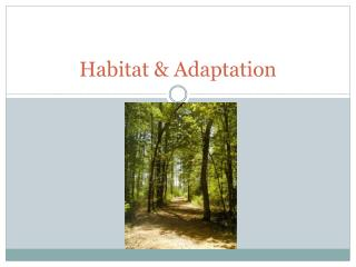 Habitat  Adaptation