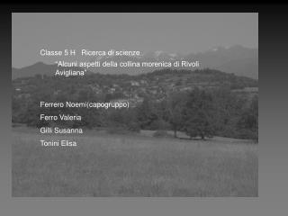 Ricerca effettuata da quattro allieve della 5 H: FERRERO NOEMIcapogruppo  TONINI ELISA  GILLI SUSANNA  FERRO  VALERIA  T