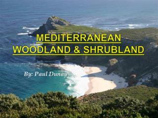 Mediterranean Woodland  Shrubland
