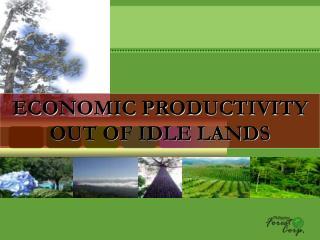 ECONOMIC PRODUCTIVITY OUT OF IDLE LANDS