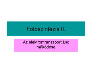 Fotoszint zis II.