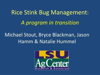 Rice Stink Bug Management: