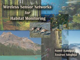 What is a Wireless Sensor Network WSN  An autonomous, ad hoc system consisting of a collective of networked sensor nodes