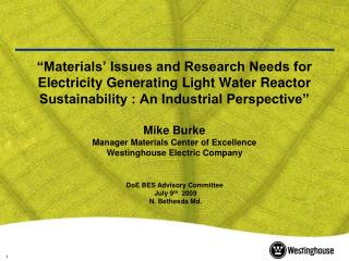 Materials  Issues and Research Needs for Electricity Generating Light Water Reactor Sustainability : An Industrial Pers