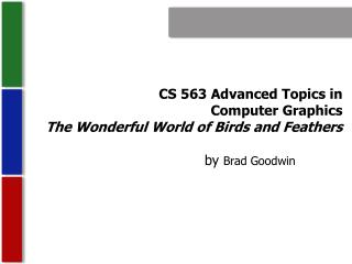 CS 563 Advanced Topics in  Computer Graphics The Wonderful World of Birds and Feathers