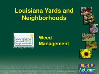 Louisiana Yards and Neighborhoods