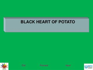 BLACK HEART OF POTATO