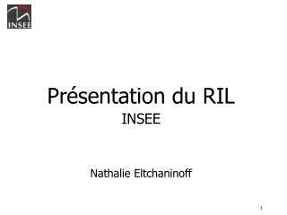 Pr sentation du RIL INSEE   Nathalie Eltchaninoff