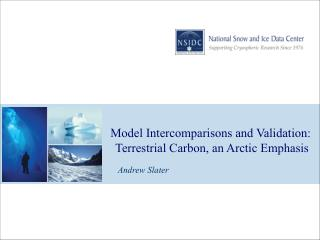 Model Intercomparisons and Validation:  Terrestrial Carbon, an Arctic Emphasis