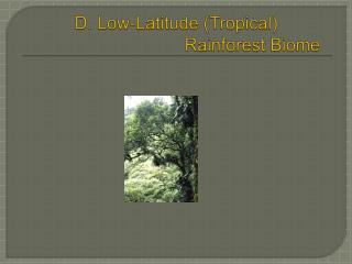 D. Low-Latitude Tropical    Rainforest Biome