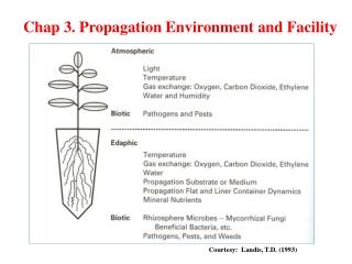 Environmental Factors Solar Radiation