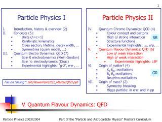V. Quantum Flavour Dynamics: QFD