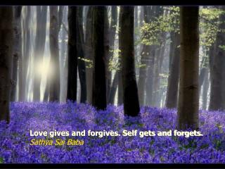 Love gives and forgives. Self gets and forgets.  Sathya Sai Baba