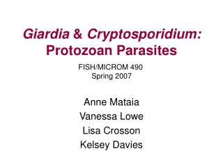 Giardia  Cryptosporidium: Protozoan Parasites