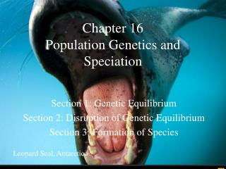 Chapter 16 Population Genetics and Speciation