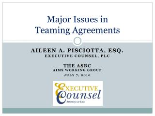 Major Issues in  Teaming Agreements