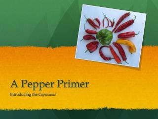 A Pepper Primer