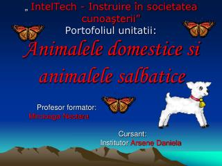 IntelTech - Instruire  n societatea cunoasterii  Portofoliul unitatii: Animalele domestice si animalele salbatice