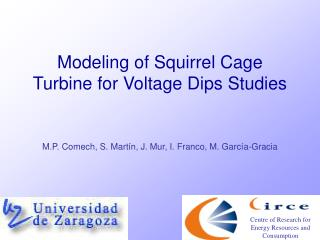 Modeling of Squirrel Cage Turbine for Voltage Dips Studies