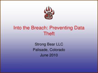Into the Breach: Preventing Data Theft