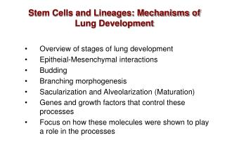 Stem Cells and Lineages: Mechanisms of Lung Development