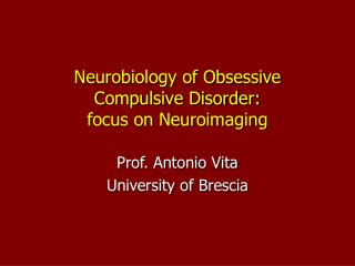 Neurobiology of Obsessive Compulsive Disorder: focus on Neuroimaging